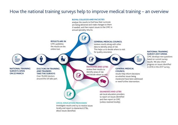 Process map of how national training survey results are used